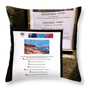 Commemorations Anzac Cove Throw Pillow