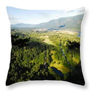 Commerce On The Columbia Throw Pillow