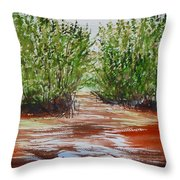 Commodore Creek Throw Pillow