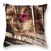 Common Abode Throw Pillow