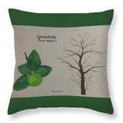 Common Apple Tree Id Throw Pillow