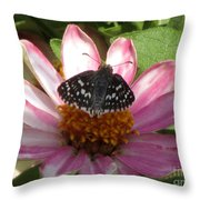 Common Checker Butterfly Throw Pillow
