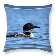 Common Loon, Framed Throw Pillow