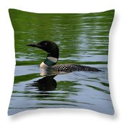 Common Loon Throw Pillow by Tony Beck
