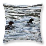 Common Merganzer Pair Throw Pillow