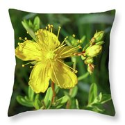 Common St. John Throw Pillow