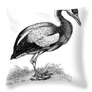 Common Stork Throw Pillow