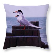 Common Tern Sterna Hirundo Throw Pillow