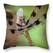 Common Whitetail Dragonfly Throw Pillow