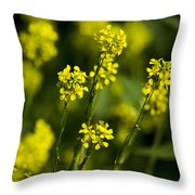 Common Wintercress Flowers Throw Pillow