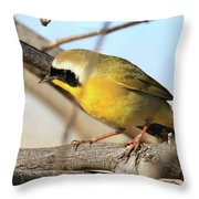 Common Yellowthroat #2 Throw Pillow