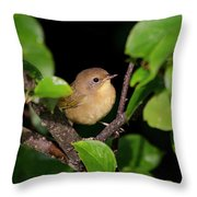 Common Yellowthroat Warbler Throw Pillow