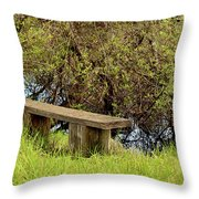 Communing With Nature Throw Pillow