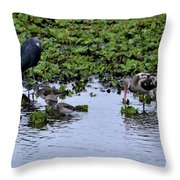 Community Pond Throw Pillow