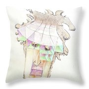 Compartment Man Throw Pillow