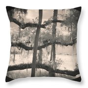 Competing Branches Throw Pillow