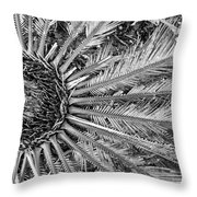 Compository Throw Pillow