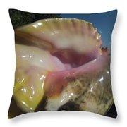 Conch Throw Pillow