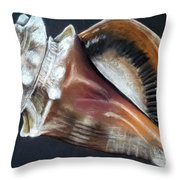 Conch Study Throw Pillow