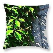 Concrete Green Throw Pillow