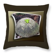 Concrete Toad Stool Throw Pillow