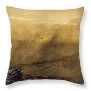 Condor In A Storm Throw Pillow