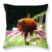 Cone Flower And Honey Bee Throw Pillow