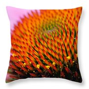 Cone Flower Closeup Throw Pillow