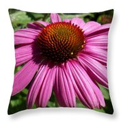 Cone Flower Throw Pillow