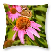Cone Flower Visitor Throw Pillow