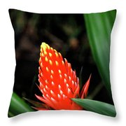 Cone Of Color Throw Pillow