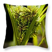 Cone Of Green Throw Pillow
