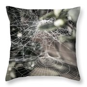 Cone Web With Dew Throw Pillow