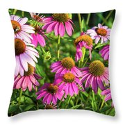 Coneflower Garden Throw Pillow