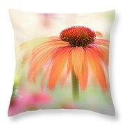 Coneflower 'hot Summer' Throw Pillow