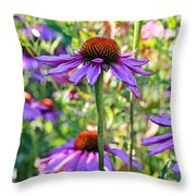 Coneflower Pedals Throw Pillow