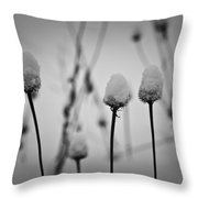 Coneflower Seedheads Covered In Snow Throw Pillow