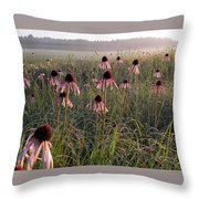 Coneflowers At Dawn Throw Pillow