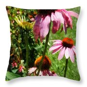 Coneflowers In Garden Throw Pillow