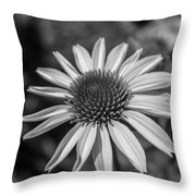 Conehead Daisy In Black And White Throw Pillow