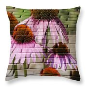 Cones In Craquelure Throw Pillow