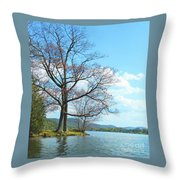 Cone's Point Throw Pillow