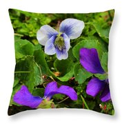 Confederate And Purple-blue Violets Throw Pillow