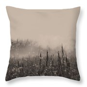 Confederate Infantry Throw Pillow