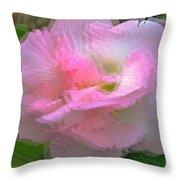 Confederate Rose Throw Pillow