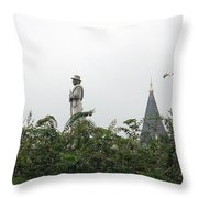 Confederate Soldier Standing Tall Throw Pillow