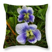 Confederate Violets Throw Pillow