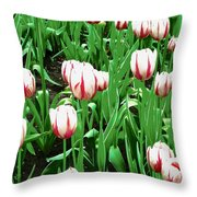 Confederation Tulips Throw Pillow