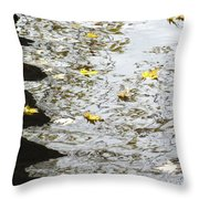 Conflicts And Balance Throw Pillow