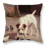 Confrontation Throw Pillow by Alfred Duke